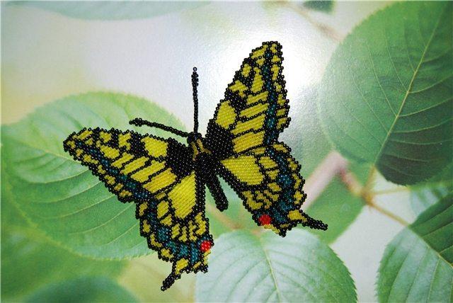бабочка из бисера схема.