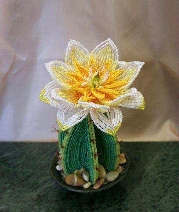 Мастер-класс плетения кактуса