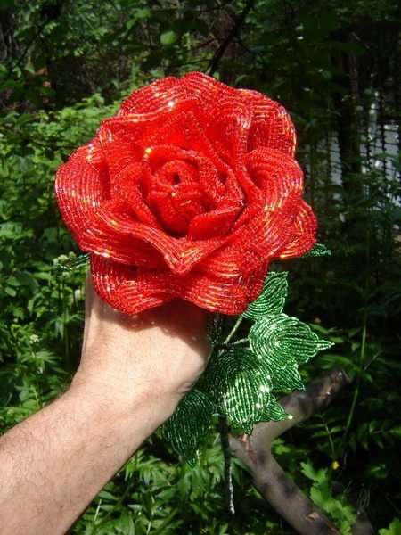 Удивительные розы от
