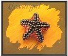 Схема плетения объемной морской звезды из бисера-8
