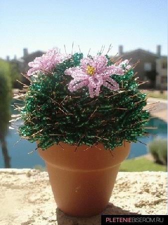 Колючий кактус из бисера своими руками