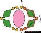 Схема плетения гранатового браслета из бусин и бисера 4